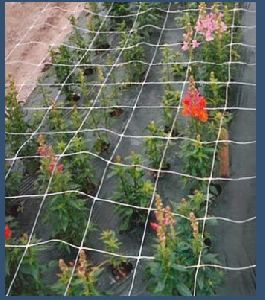Flower Fencing Net