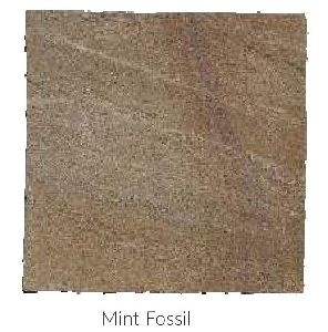 Mint Fossil Hand Cut Sandstone and Limestone Paving Stone