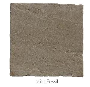 Mint Fossil Tumble Sandstone and Limestone Paving Stone