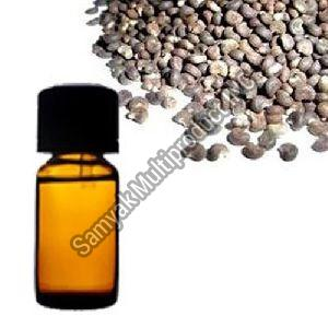 Ambrette Seed Essential Oil