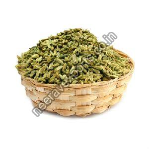 Big Fennel Seeds