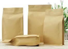 Self Seal Paper Bag