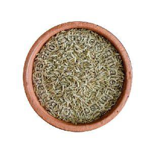 Normal Whole Cumin Seeds