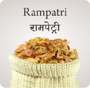 Rampatri