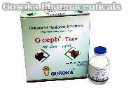 G Ceph - Tazo Injection