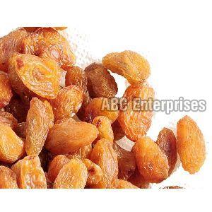 Dry Raisins 02