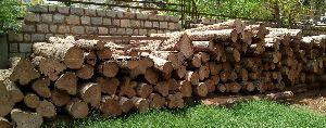 African Teak Wood Logs