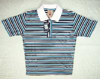 Boys Polo T-Shirt (PD-101)
