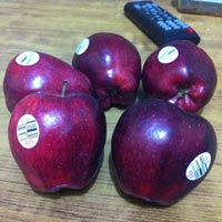 Fruit Labels