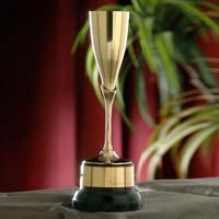 Brass Cups 02