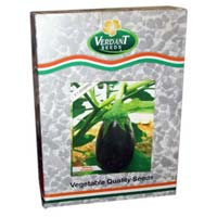 F1 Shyam 61 Brinjal Seeds