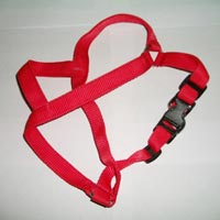 Dog Body Belts 01