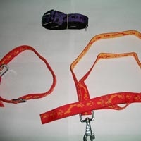 Dog Collars 01