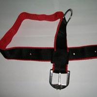 Dog Collars 03
