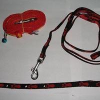 Dog Collars 07
