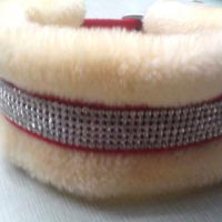 Dog Collars 09