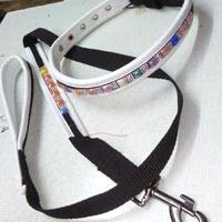 Dog Collars 10