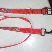 Dog Collars 12