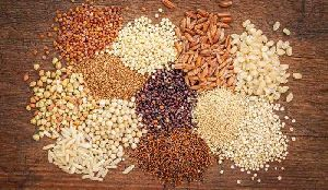 Millet Seed 01