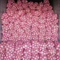 Fresh Bellary Onion