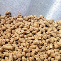 cattle feed ingredients