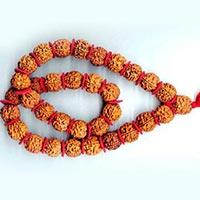 32 Beads Rudraksha Kantha Mala