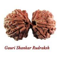 Gauri Shankar Nepali Rudraksha Beads