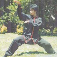 Snake Style Kung Fu DVD
