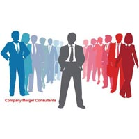 Company Merger Consultant