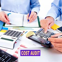 Cost Auditing Services