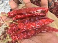 S-273 Dried Red Chilli