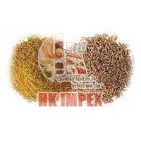 Cumin Seeds & Powder