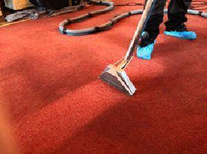 Carpet Treatment Services