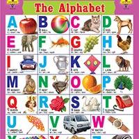 18x23 Educational Charts
