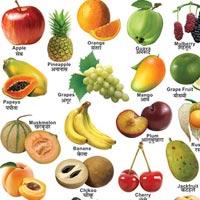 22x28 Fruit Charts