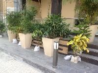 FRP Planters 04