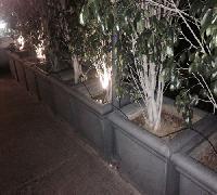 FRP Planters 08