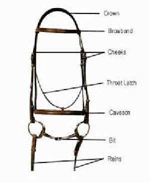 English Horse Bridle 19