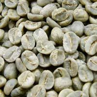 BHP Grade Arabica Green Coffee Beans