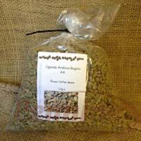Bugisu AA Arabica Green Coffee Beans