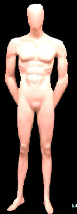 Male Mannequin 09