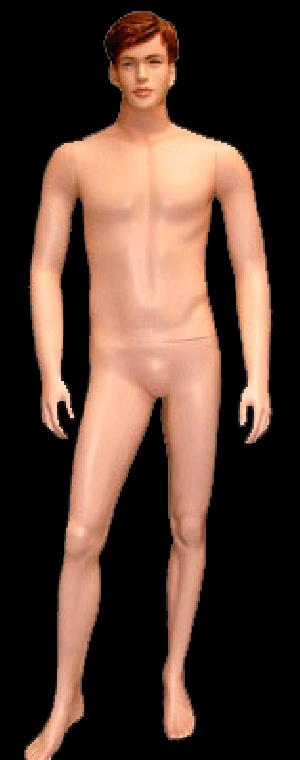 Male Mannequin 12