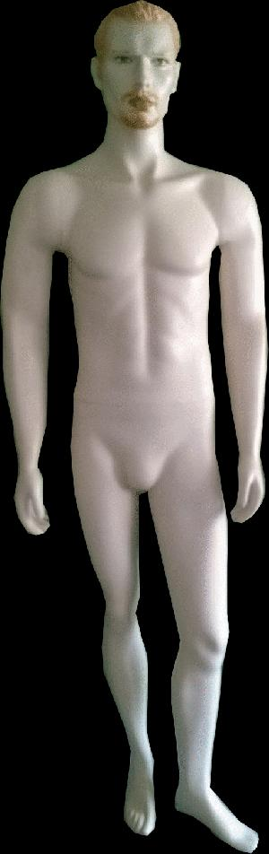 Male Mannequin 16
