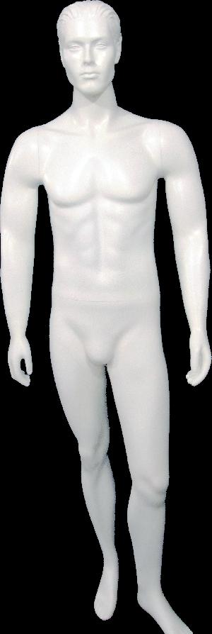 Male Mannequin 27