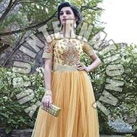 Awesome Fancy Gown