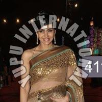 Mandira Gold Jalak Nett Saree