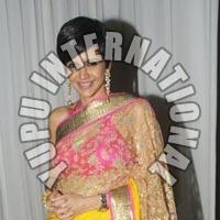 Mandira Life Style Saree