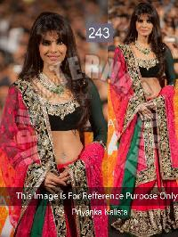 Multi Sequence Lehenga (243)