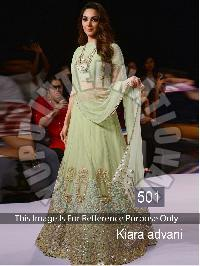 Multi Sequence Lehenga (501)