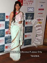 Plain Designer Saree 45